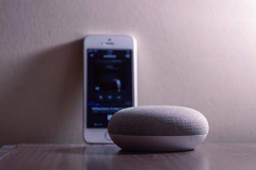 Phone And Speaker